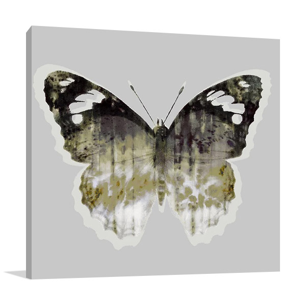 Painted Butterfly I Canvas Print