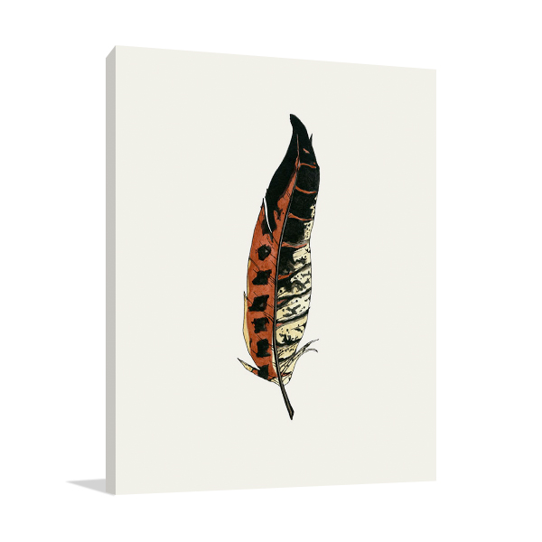 Painted Feather C Wall Art Print