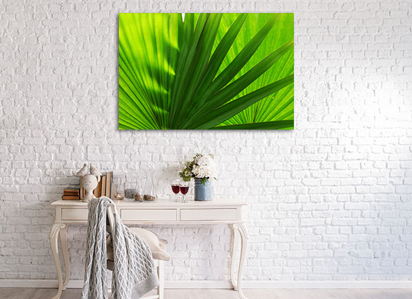 Palm Leaves Close-Up Prints Canvas