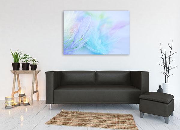 Pastel Feather Canvas Art Print Canvas Art Prints