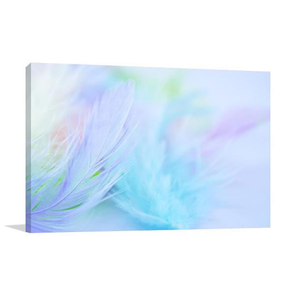 Pastel Feather Canvas Art Print Print Artwork