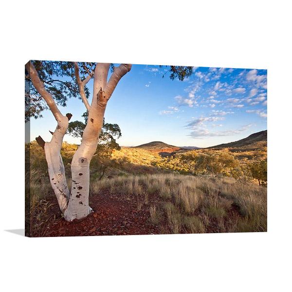Wall Print   Pilbara Western Australia