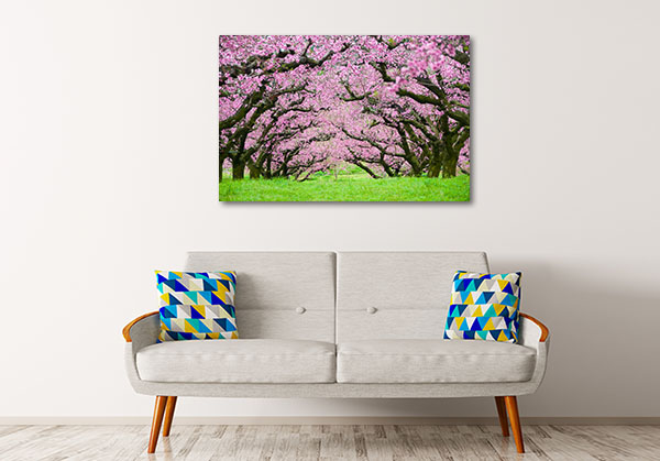 Pink Flowers Trees Tunnel Canvas Art Prints