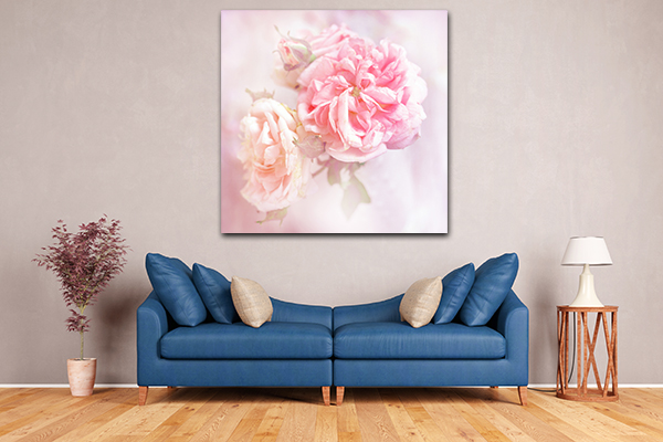 Pink Roses Art Prints