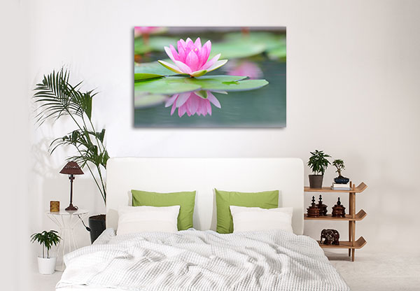Pink Water Lily Prints Canvas