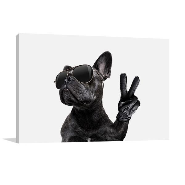 Posing French Bulldog Art Prints