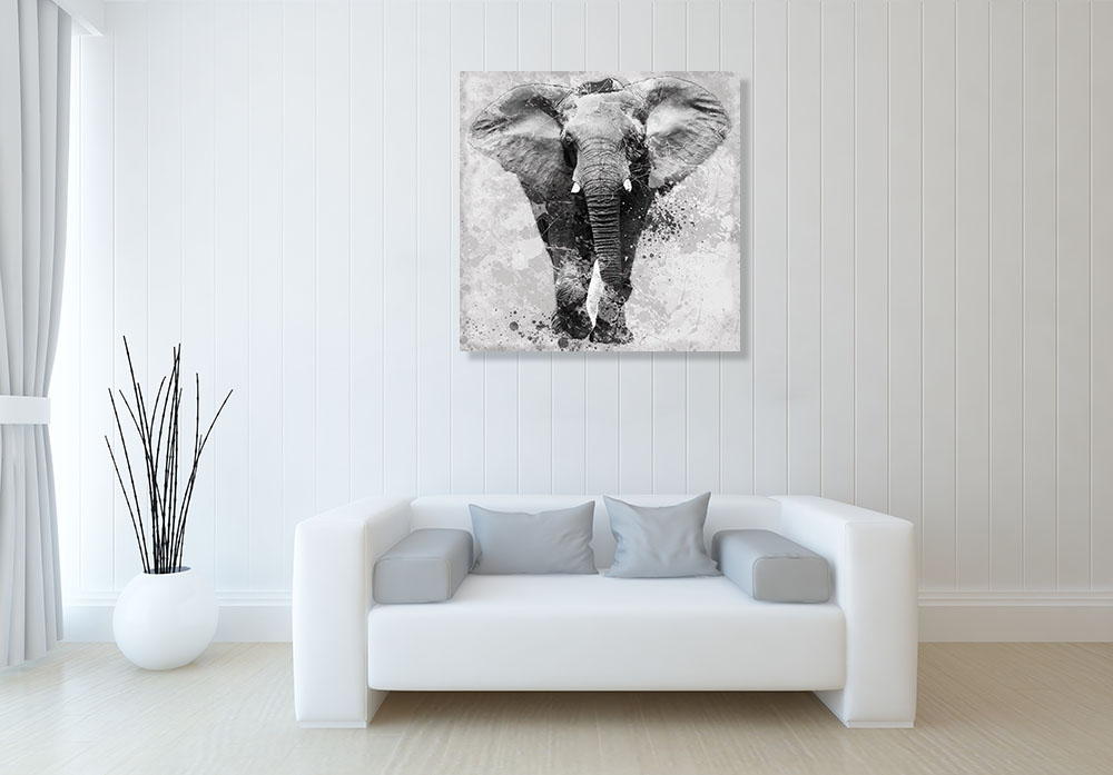 Animal Photography Print on Canvas