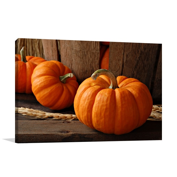Pumpkins Wall Art