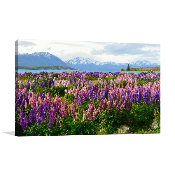 Purple and Pink Flowers Prints Canvas
