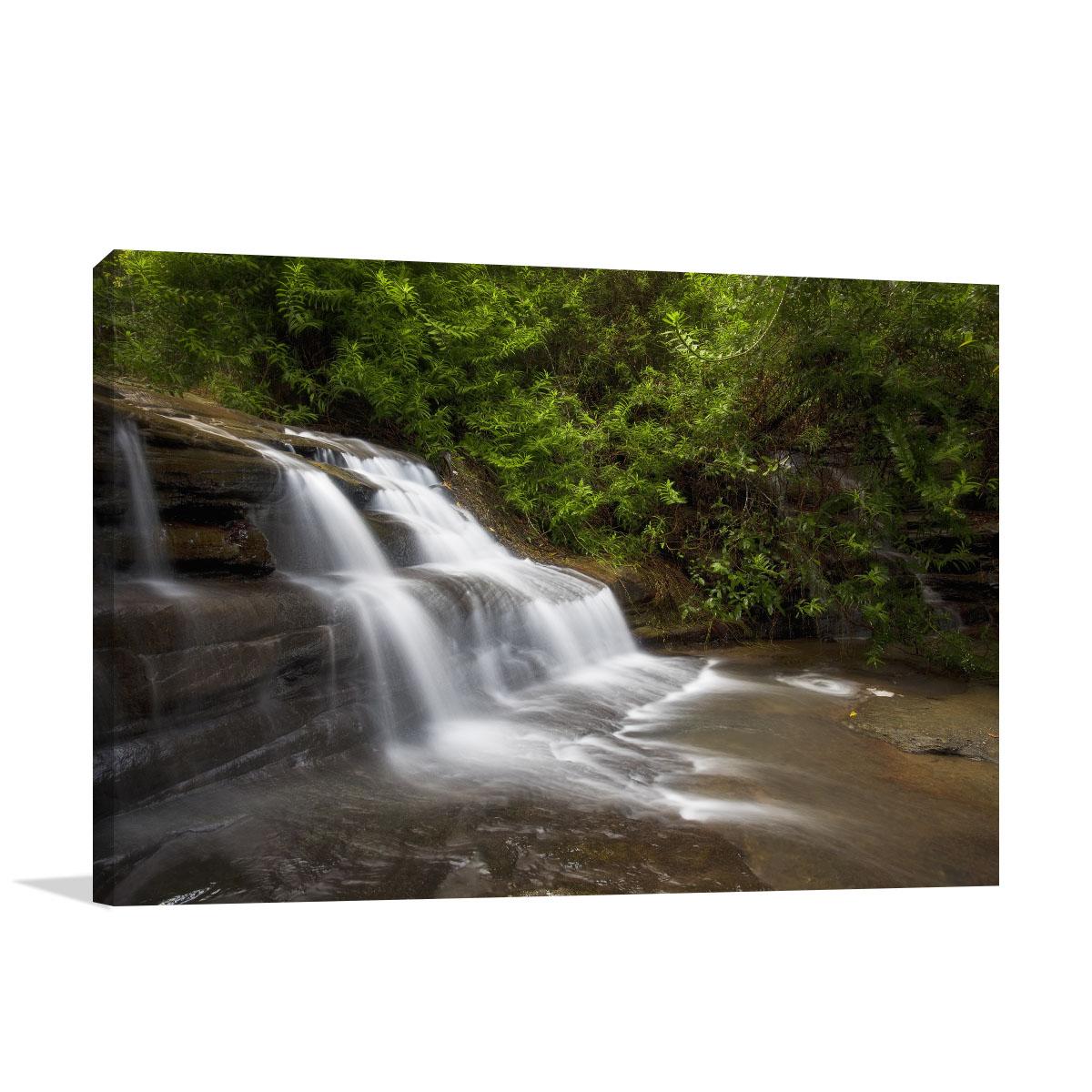 Queensland Art Print Buderim Waterfalls