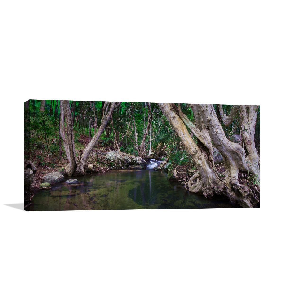 Queensland Art Print Davies Creek