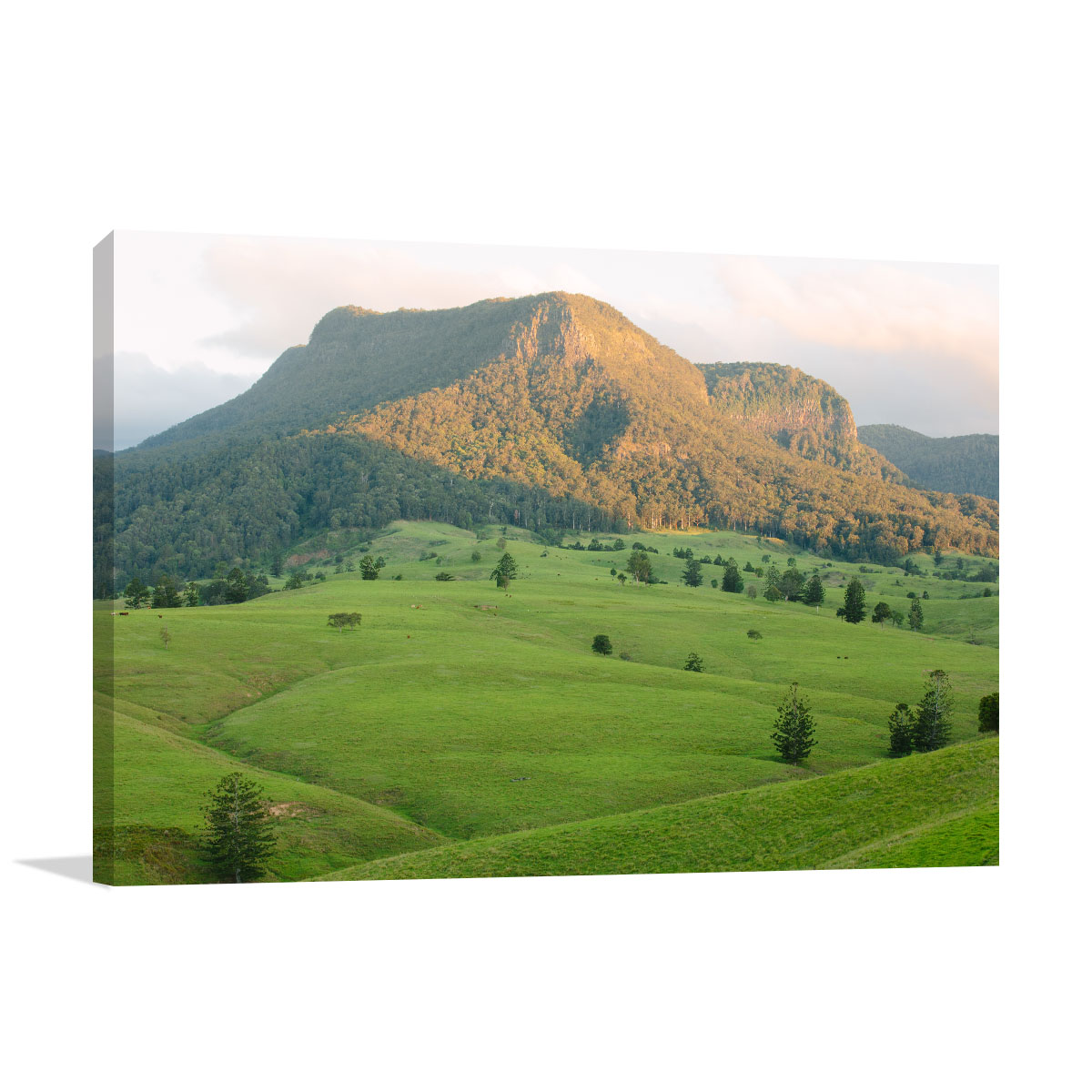 Queensland Art Print Lost World Valley