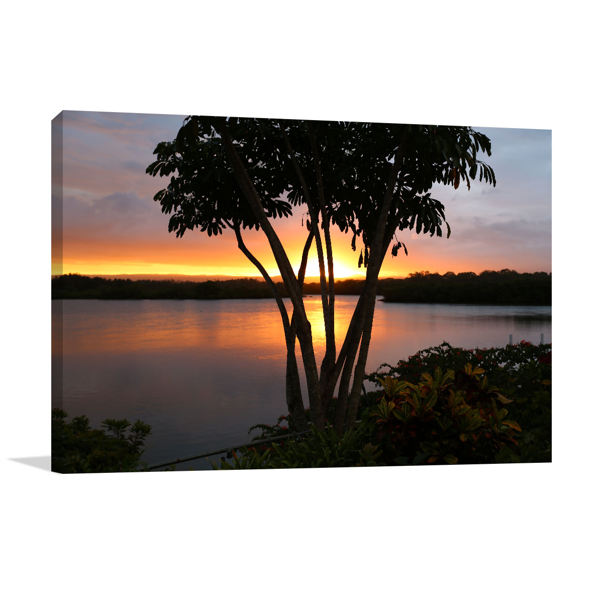Queensland Art Print Paradise Point