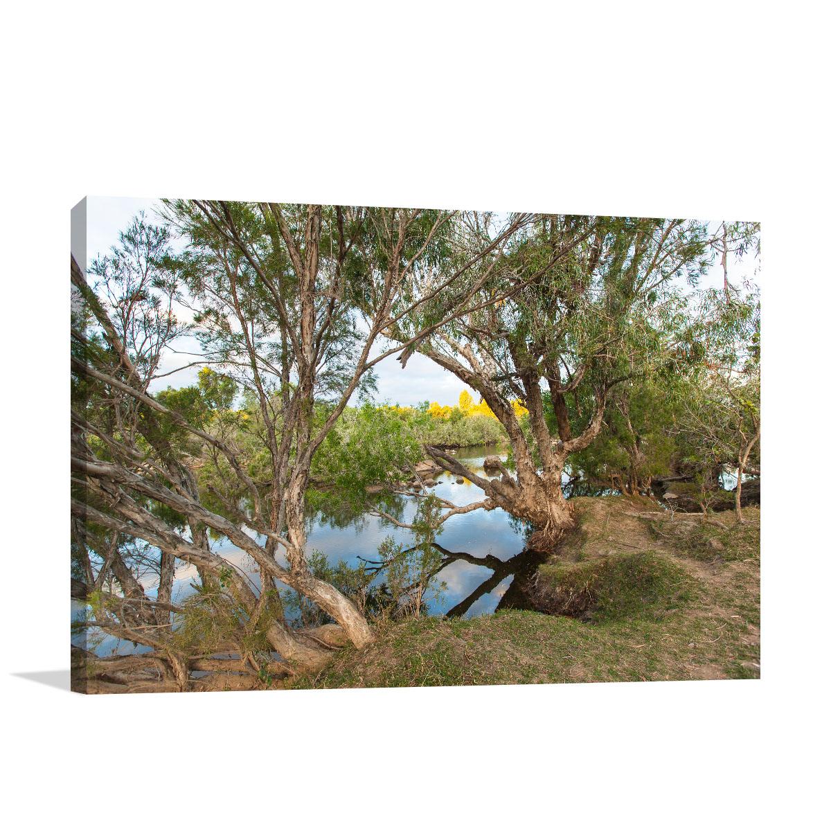 Queensland Art Print St George Creek