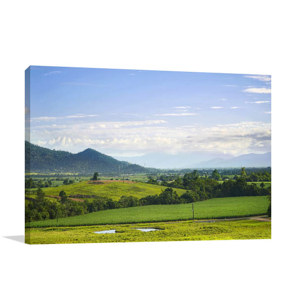 Queensland Wall Print Tully Fields Canvas Art
