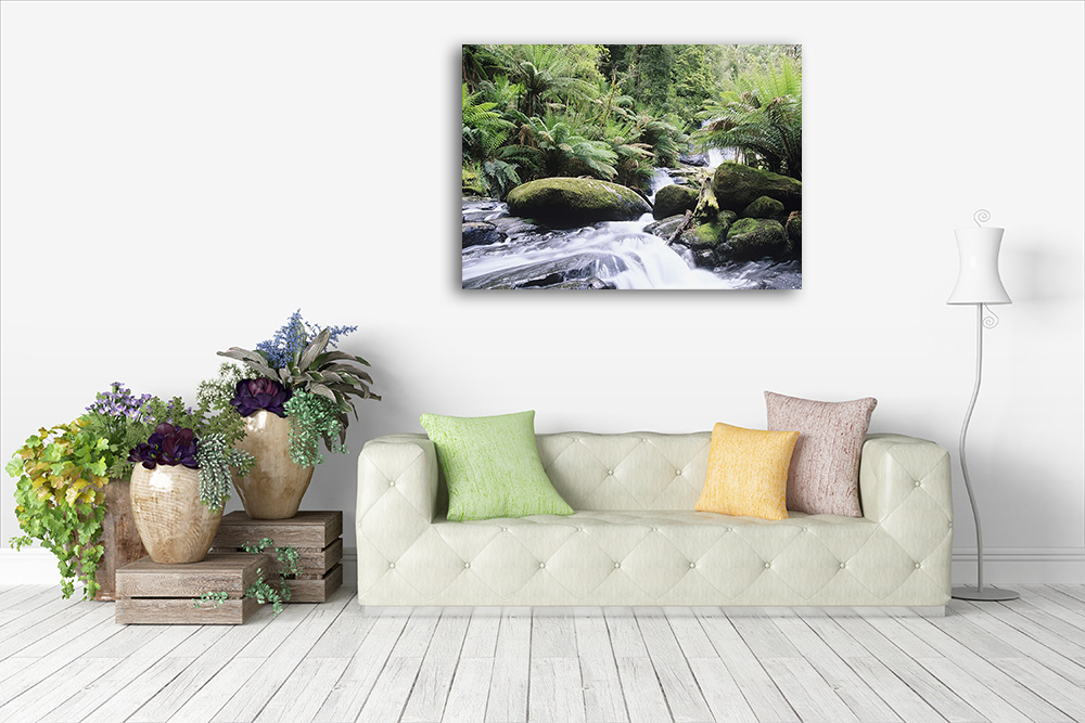 Canvas Print | Nature Photography