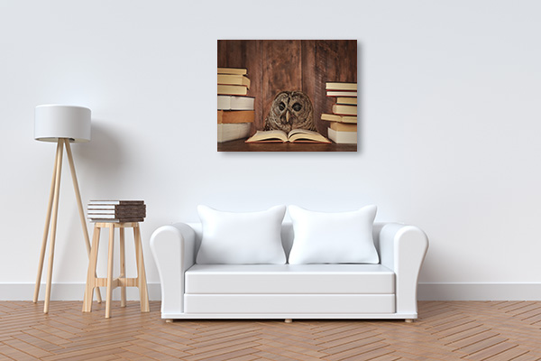 Reading in the Woods Canvas Prints