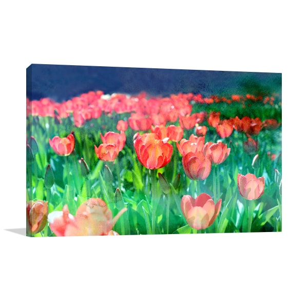 Red Tulips Wall Canvas
