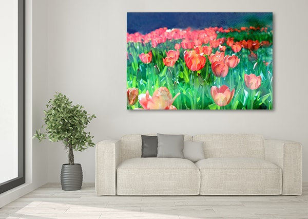 Red Tulips Artwork on the Wall