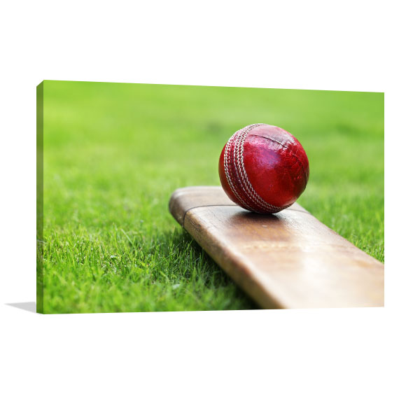 Resting Cricket Ball Art Prints