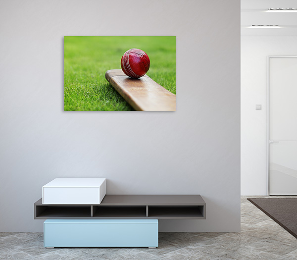 Resting Cricket Ball Canvas Prints