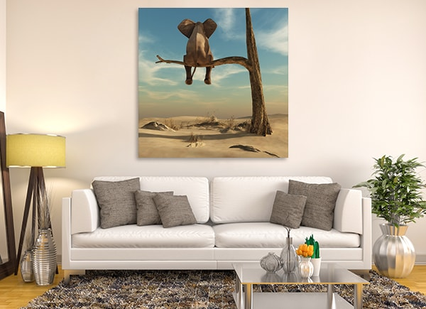 Resting Elephant Canvas Art Print on the Wall