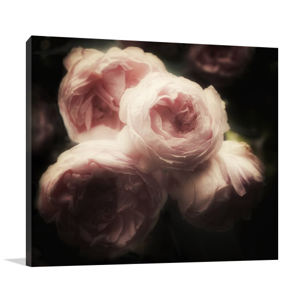 Romantic Glamour Roses  Picture Wall