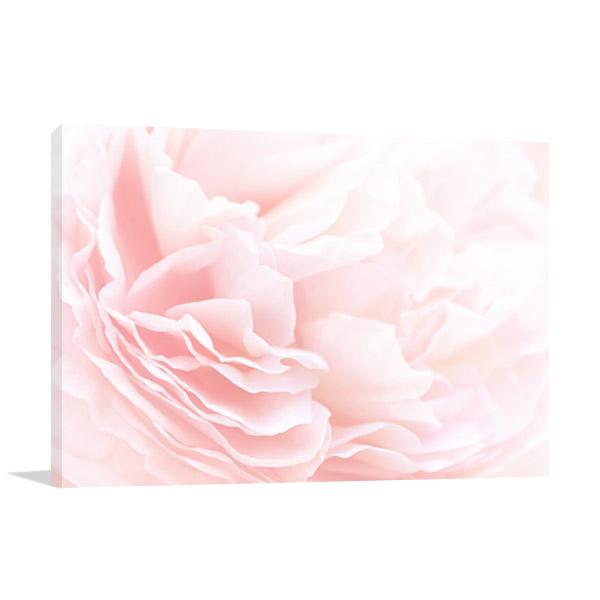 Rose Petals Soft Pastel Print Picture