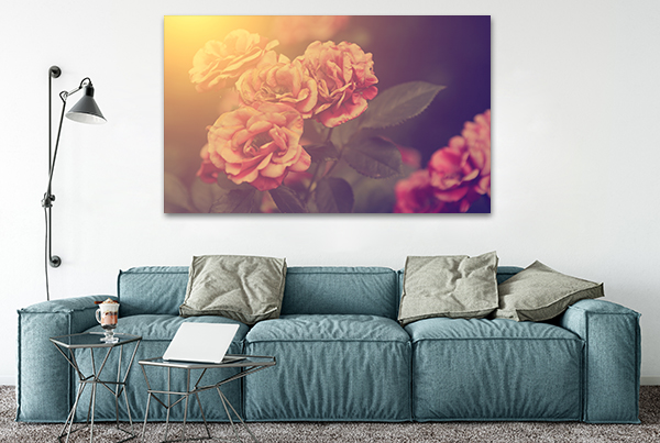 Roses Wall Art Print on the wall