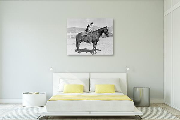 Saddle Up Canvas Prints