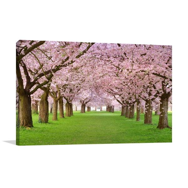 Sakura Season Print Artwork