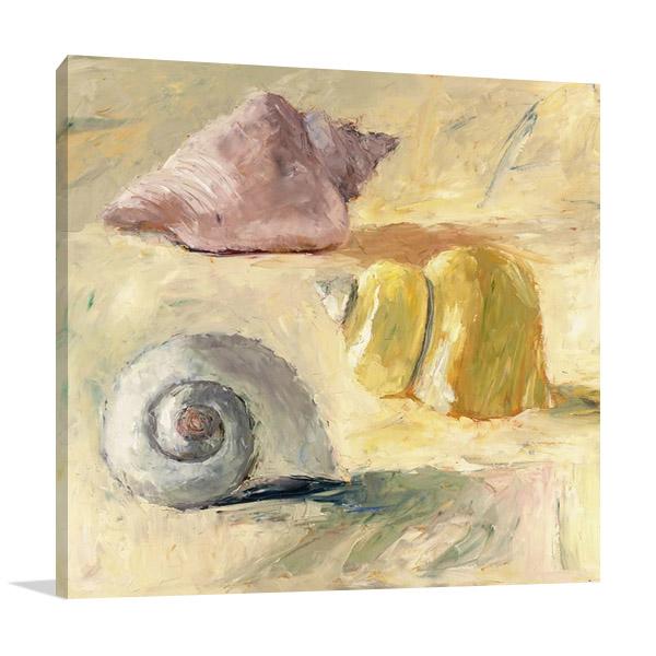 Seashells II Canvas Art Print