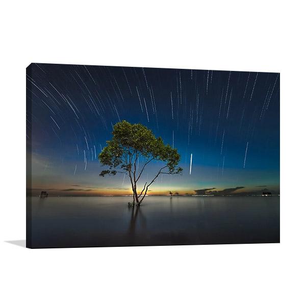 Shooting Stars Print on Canvas