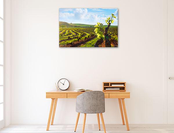 South Australia Art Print Barossa Valley Vineyard Photo Artwork
