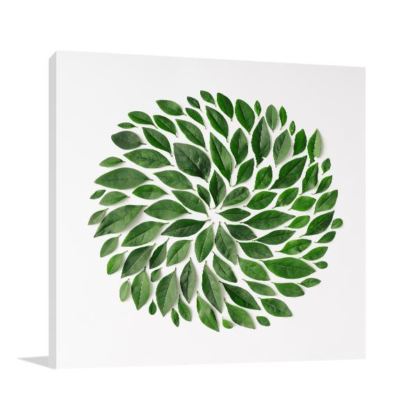 Spiral Leaves Art Prints