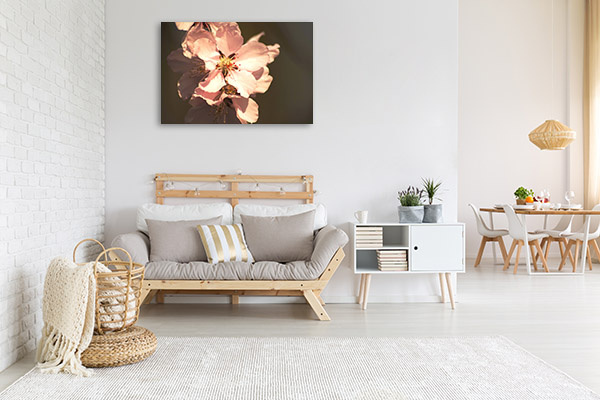 Spring Blossom Wall Canvas