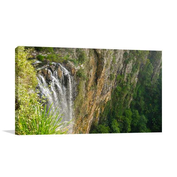 Springbrook National Park Wall Print Purlingbrook Falls Photo Canvas