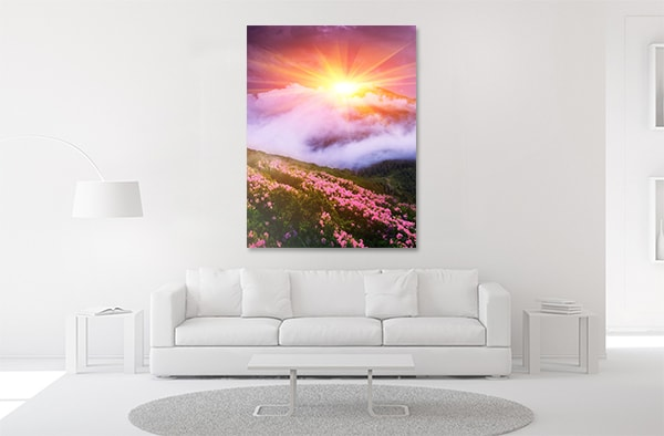 Summer Blossom Canvas Prints