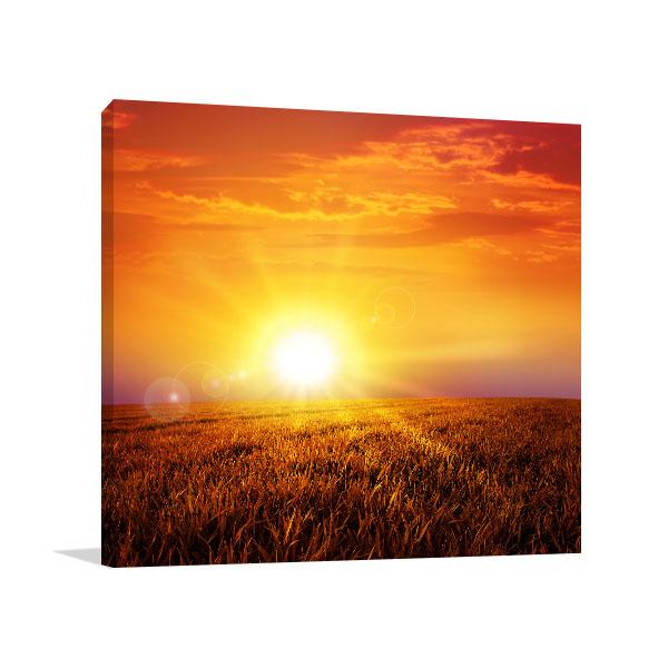 Sunset On Grass Field Canvas Art Prints