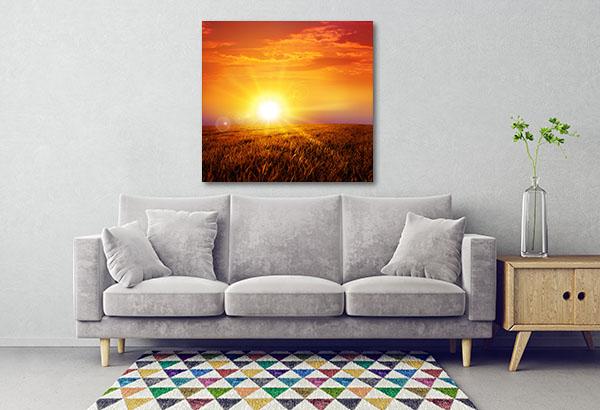 Sunset On Grass Field Canvas Prints