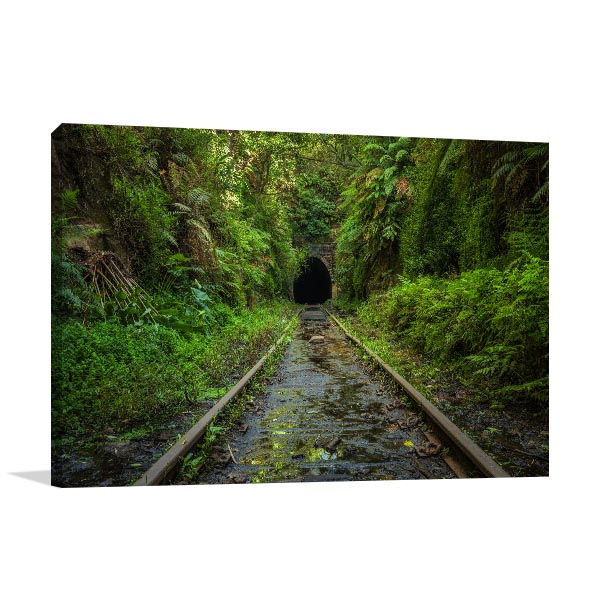 Sydney Art Print Helensburgh Abandoned Railway Wall Canvas