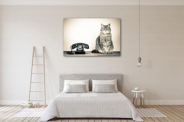 Telephone and Cat Art Prints