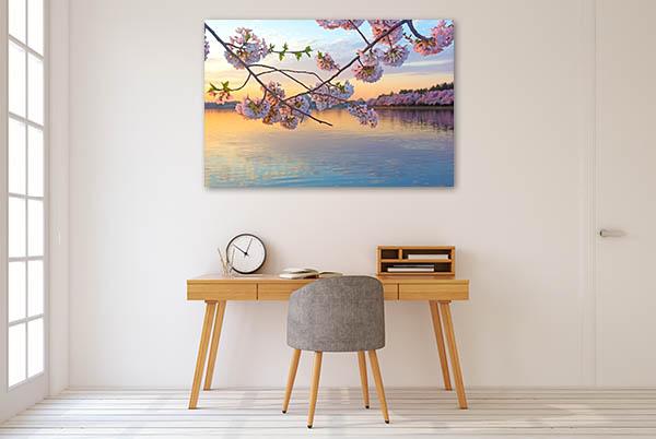 Tidal Basin Canvas Prints