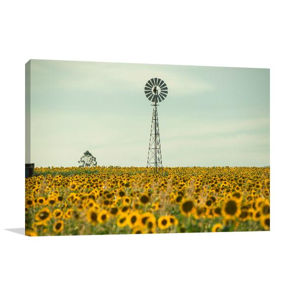 Toowoomba Wall Art Print Sunflowers Windmill