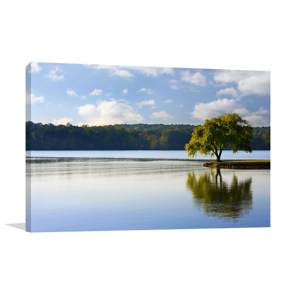Tree On A River Canvas Art Prints