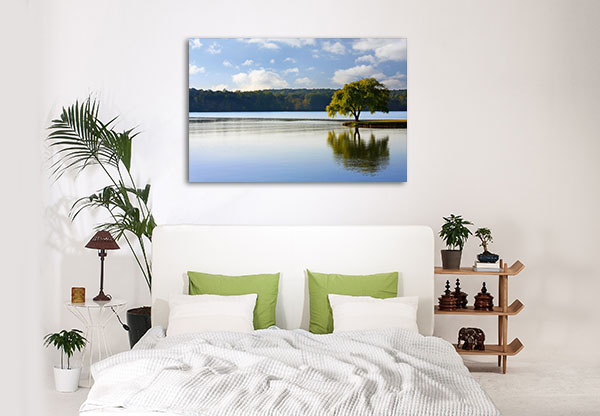 Tree On A River Prints Canvas