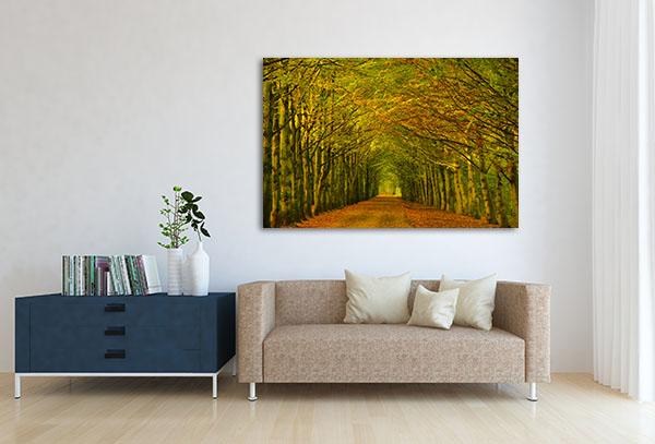 Tree Tunnel Prints Canvas