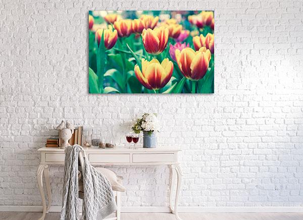 Tulip Flower Garden Art Prints