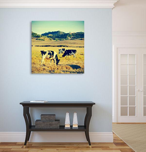 Vintage Eating Cow Canvas Art Prints