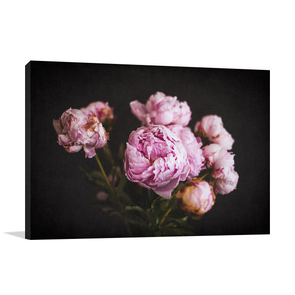 Vivid Blooming Peonies Picture Wall